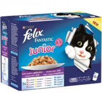 Felix fantastic alutasakos multipack 12x100g junior vegyes válogatás aszpikban