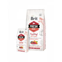 Brit Fresh Puppy Large Growth & Joints Friss Marha sütőtökkel 2,5kg