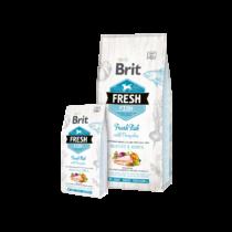 Brit Fresh Adult Large Muscles & Joints Friss Hal sütőtökkel 12kg