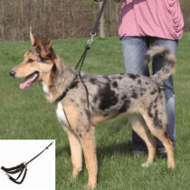 Trixie Hám Lead n Walk Training L 45–65cm/25mm,fekete