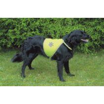 Biztonsági Mellény Kutyának Xs