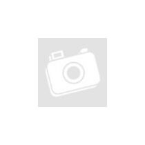 Orijen freeze dried regional red - jutalomfalat 42g
