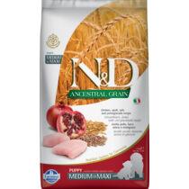 N&D Dog Ancestral Grain csirke,tönköly,zab&gránátalma puppy med&maxi 2,5kg