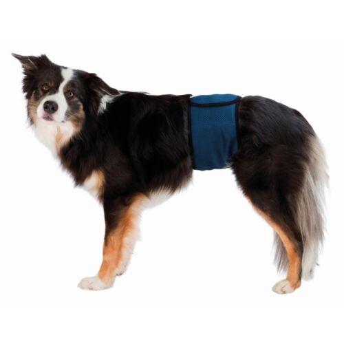 Pelenka fiú kutyáknak L 55-65cm kék